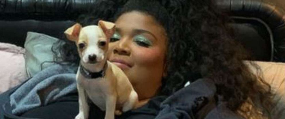 PHOTO: Lizzo posted a series of videos and pictures with Poke who was adopted from Underdog Pet Rescue of Wisconsin.