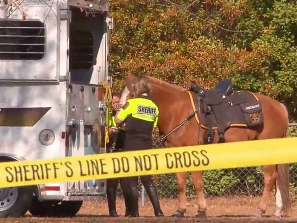 PHOTO: Additional resources have been allocated to help conduct interviews and searches for the little girl, including boats from the North Carolina Division of Marine Fisheries, canines and police horses from neighboring agencies, Miller said.