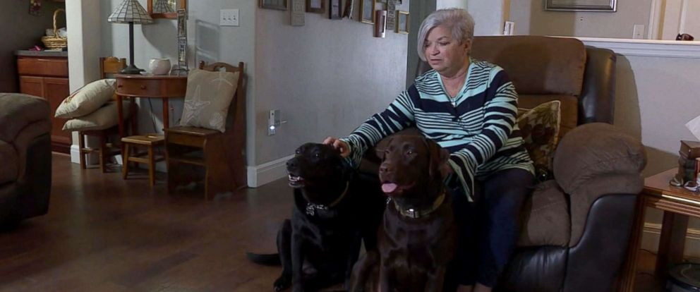 PHOTO: Maureen Hatchers two dogs were shown on her homes doorbell camera running for help on Dec. 3 after she suffered a stroke in St.Augustine, Florida.