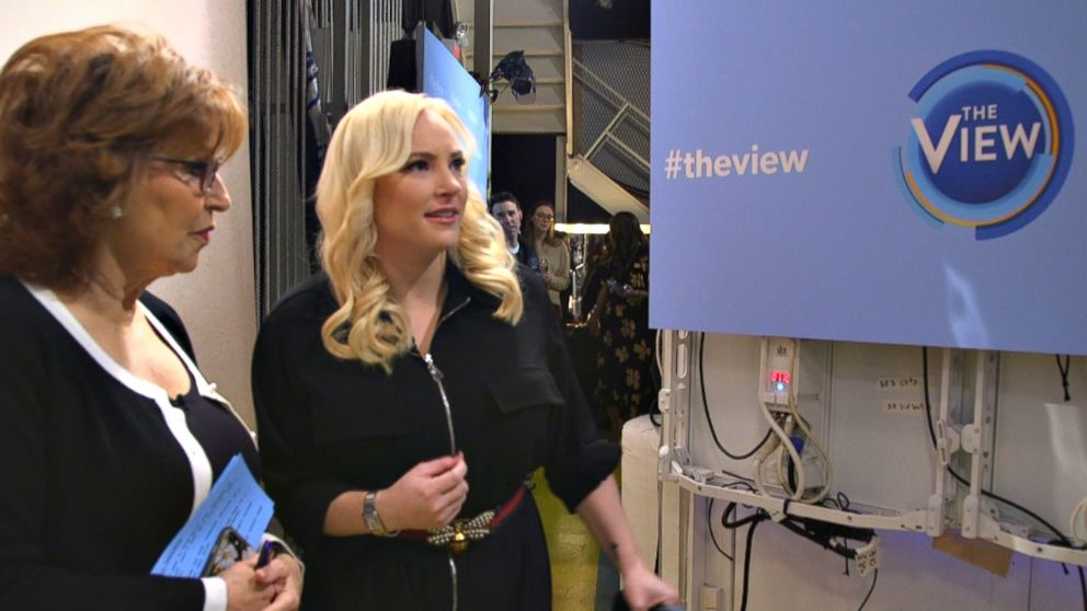 PHOTO: Meghan McCain appears backstage with her fellow The View co-host Joy Behar.