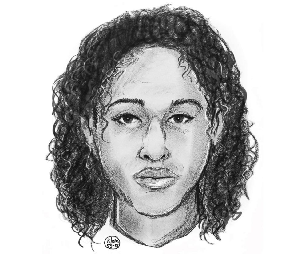 Police sketch of one of the two women found taped together in the Hudson River on Oct. 24, 2018.