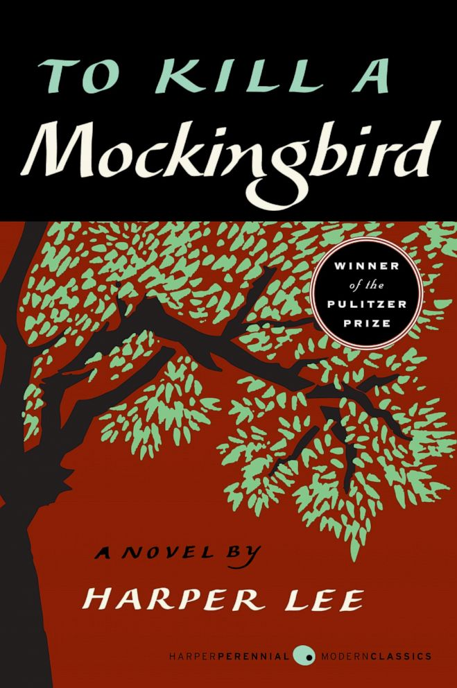 PHOTO: Ana Navarro shares Harper Lees classic To Kill A Mockingbird as one of her 2019 summer must-reads on The View.