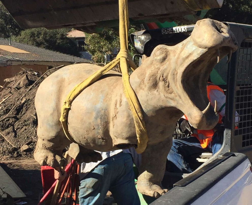PHOTO: A 400-pound bronze hippo is recovered from the mud in Montecito, Calif., Feb. 17, 2018. The hippo, which had been swept away in the mudslides, belonged to a woman who had bought it for her now-deceased husband, and it has been returned.