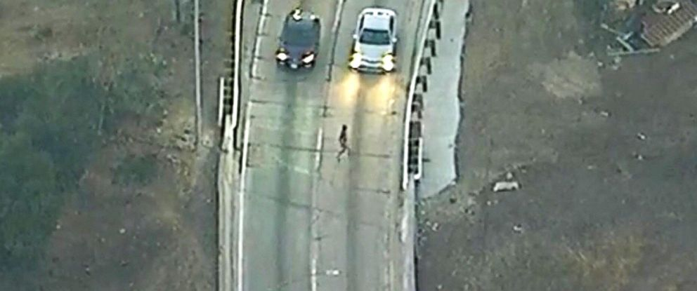 Naked alleged carjacker runs across highway after leading