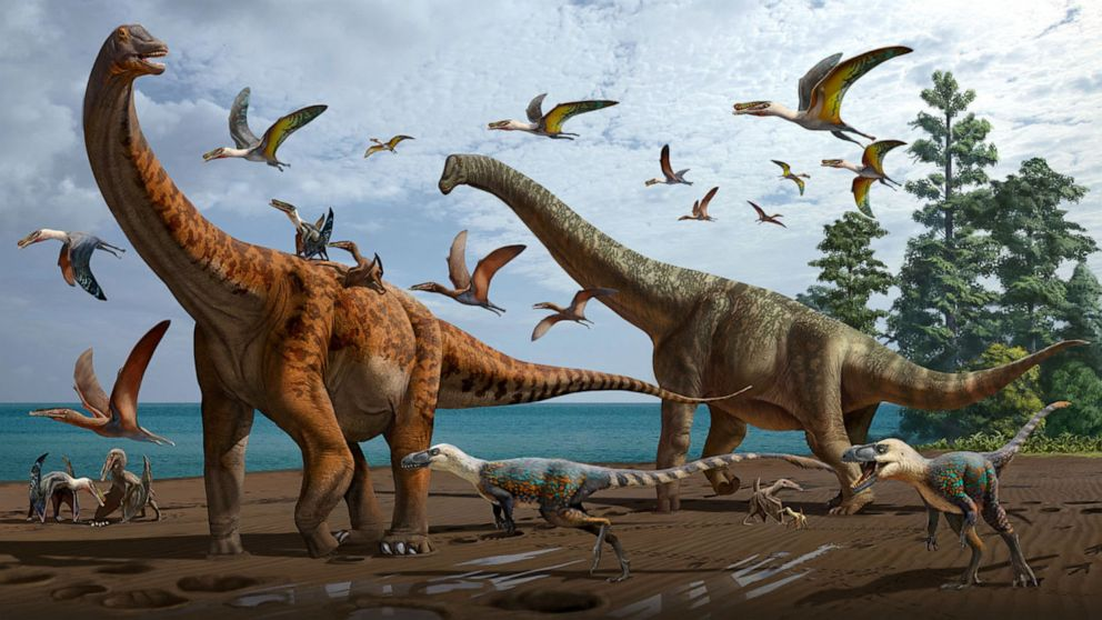 2 new species of massive sauropod dinosaurs found in China, a 1st for the  region - ABC News