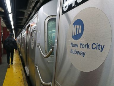 Pit bull attacks woman on subway after altercation