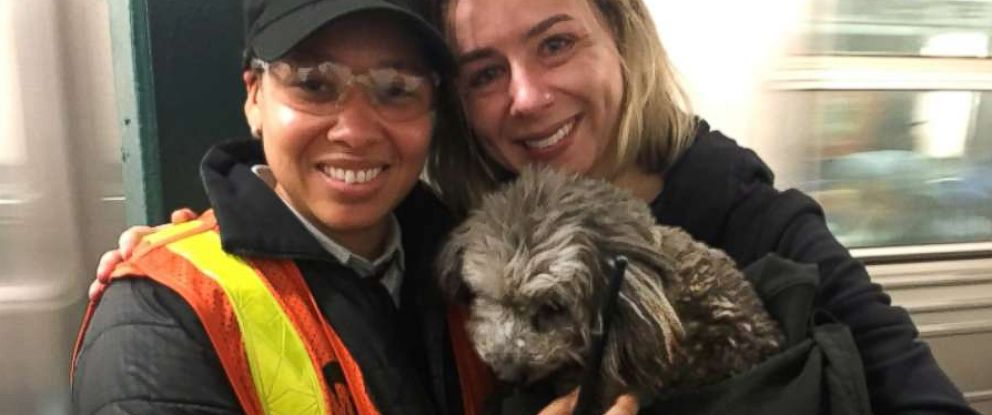 PHOTO: Officials rescued a dog from the subway tracks in New York, Feb. 16, 2017.