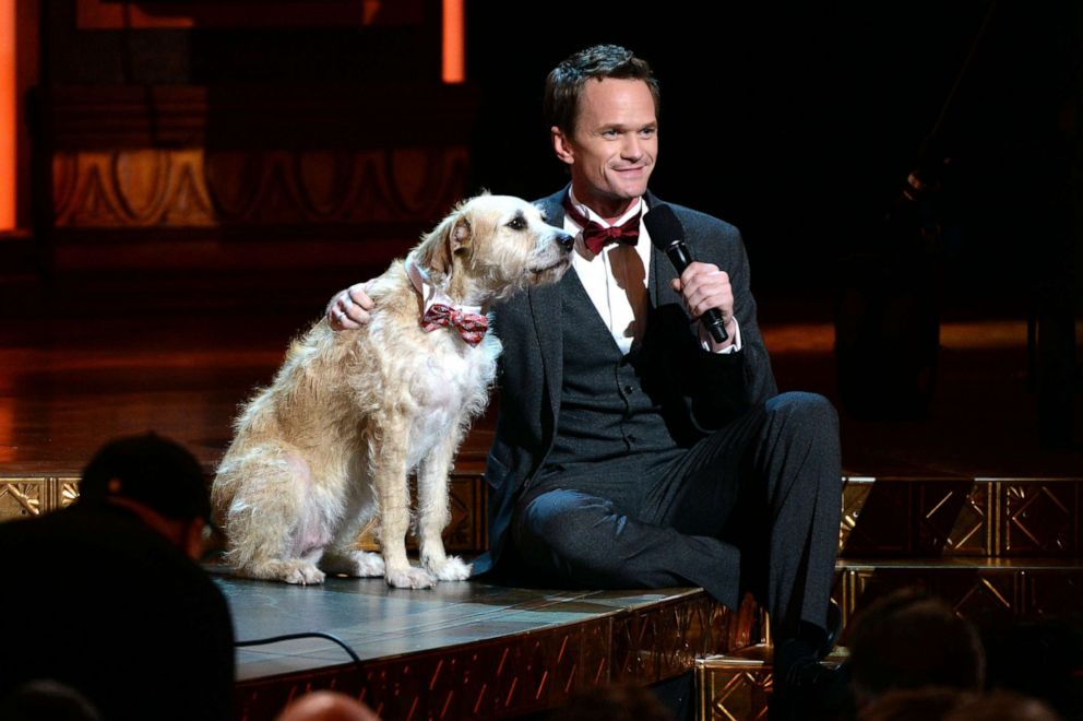 PHOTO: Host Neil Patrick Harris performs onstage at The 67th Annual Tony Awards at Radio City Music Hall, June 9, 2013 in New York City.