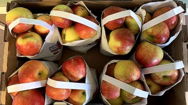 Thousands of fresh apples recalled over listeria concerns by Michigan produce company