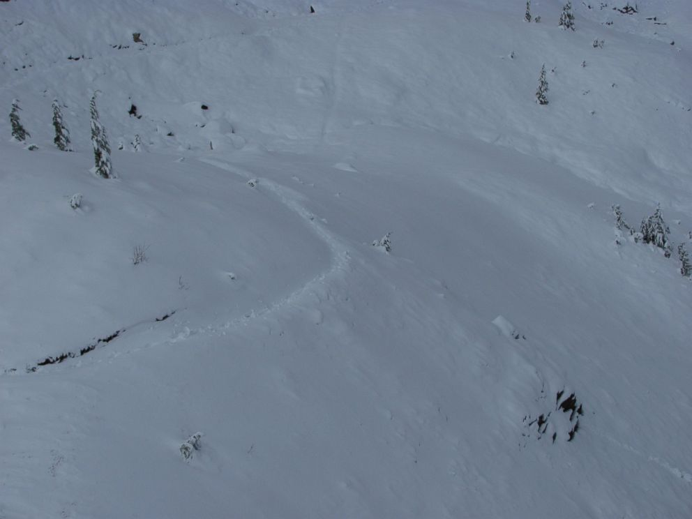 PHOTO: A photo released by the Snohomish County Sheriffs office in Washington shows tracks that their helicopter crew spotted in the snow on the Pacific Crest Trail at 5500-foot elevation during the search for hiker Katharina Groene.