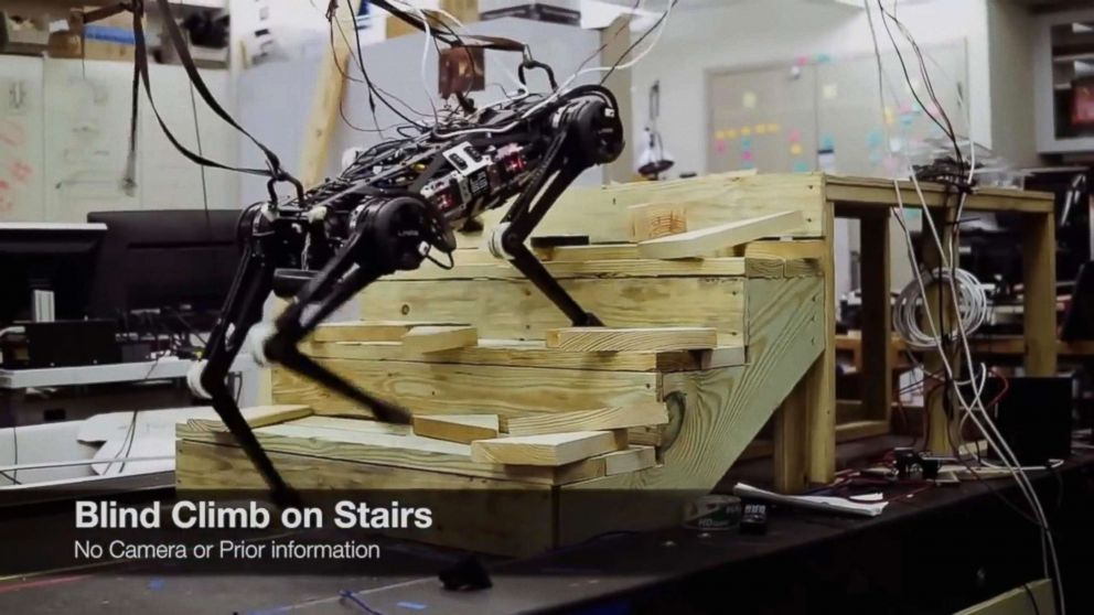 """""""Blind"""" Cheetah 3 robot ,which is designed by Sangbae Kim of MIT, climbs up the stair and litters July, 2018."""