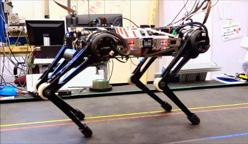 """""""Blind"""" Cheetah 3 robot, which is designed by Sangbae Kim of MIT, is to be used in challenging environment July, 2018."""