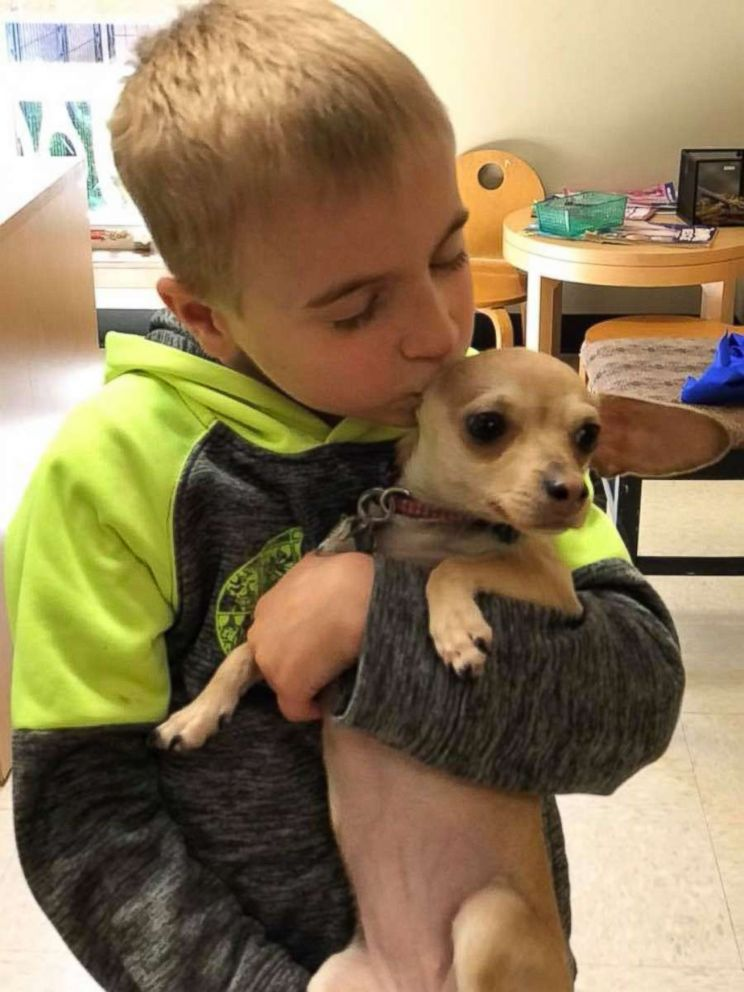 Roman McConn, 7, and his mother have rescued nearly 1,400 dogs with their group Project Freedom Ride.