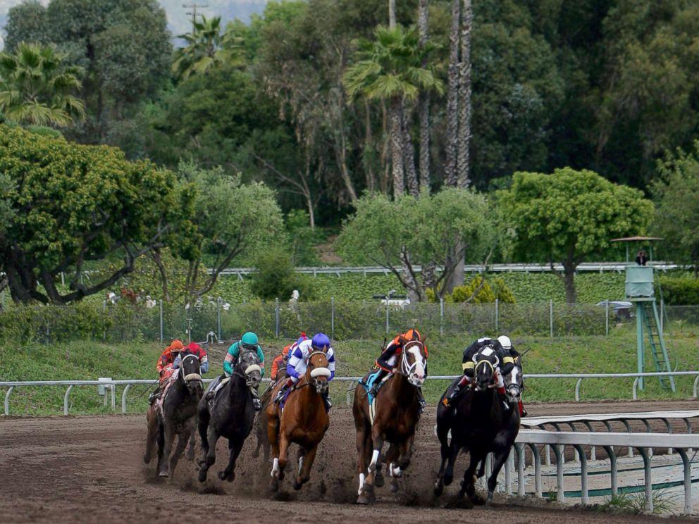 PHOTO: Horses take the final turn during the Santa Anita Derby at Santa Anita Park, April 9, 2005, in Arcadia, Calif.