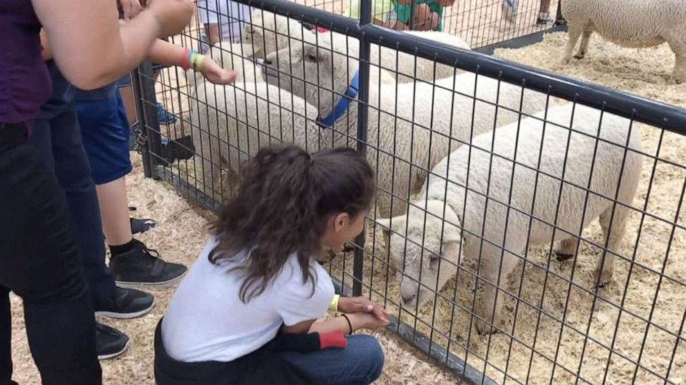 2-year-old boy dies after contracting E. coli at petting zoo thumbnail