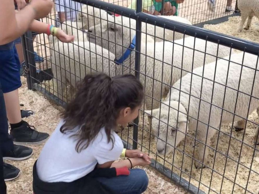 PHOTO: Four children were sickened by E. coli after visiting the petting zoo at the San Diego County Fair in mid-June. One child, a 2-year-old boy, died.