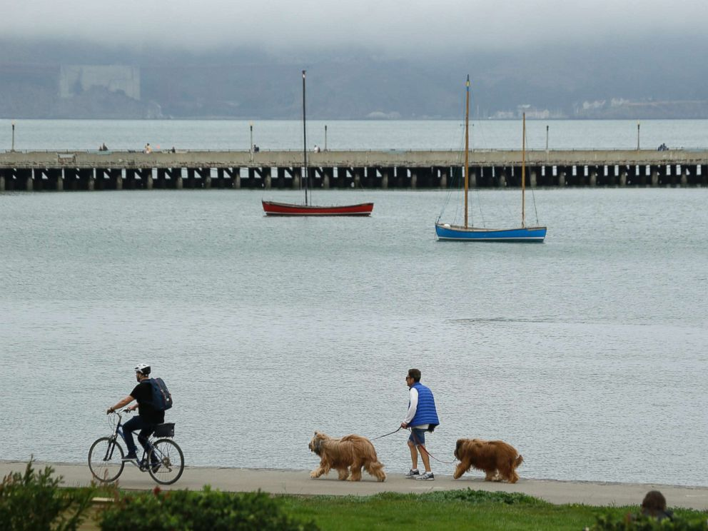 PHOTO: A man walks his dogs during a break in the weather at Aquatic Park, Sept. 13, 2017, in San Francisco.