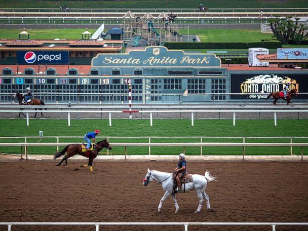 3 horses euthanized in 3 days at Santa Anita Park