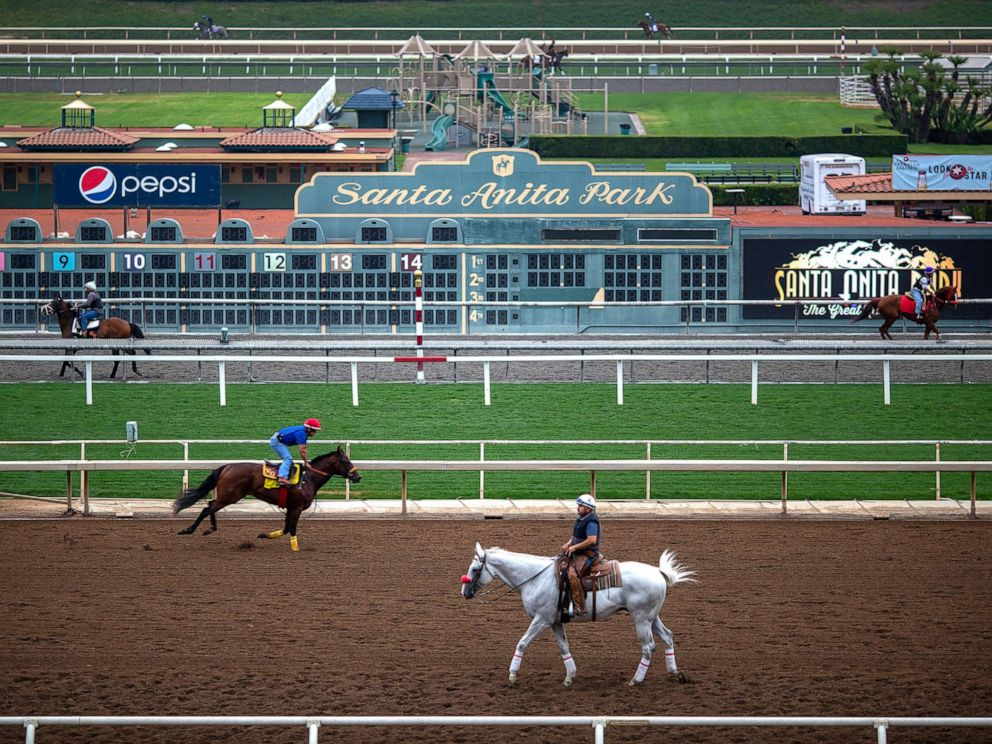 PHOTO: Race horses are seen during their morning workout at Santa Anita Park racetrack, June 15, 2019, in Arcadia, Calif.