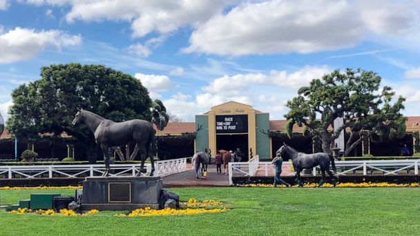 Another horse dies at Santa Anita racetrack, marking 24 in six months