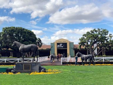 Another horse dies at Santa Anita racetrack marking 24 in six months