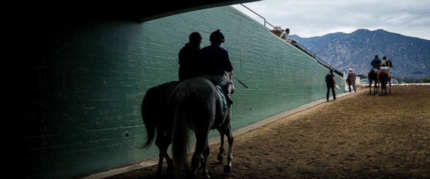 Santa Anita Park's main track reopens after 19 horse deaths in 2
