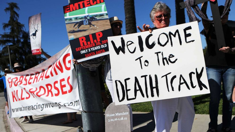 California track verteidigt Sicherheitsstandard nach Pferd wird eingeschläfert