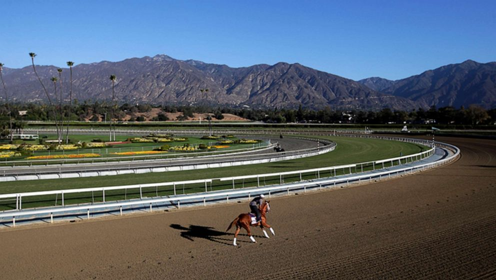 PHOTO: FILE - In this Oct. 30, 2013, file photo, an exercise rider takes a horse for a workout at Santa Anita Park with palm trees and the San Gabriel Mountains as a backdrop in Arcadia, Calif.