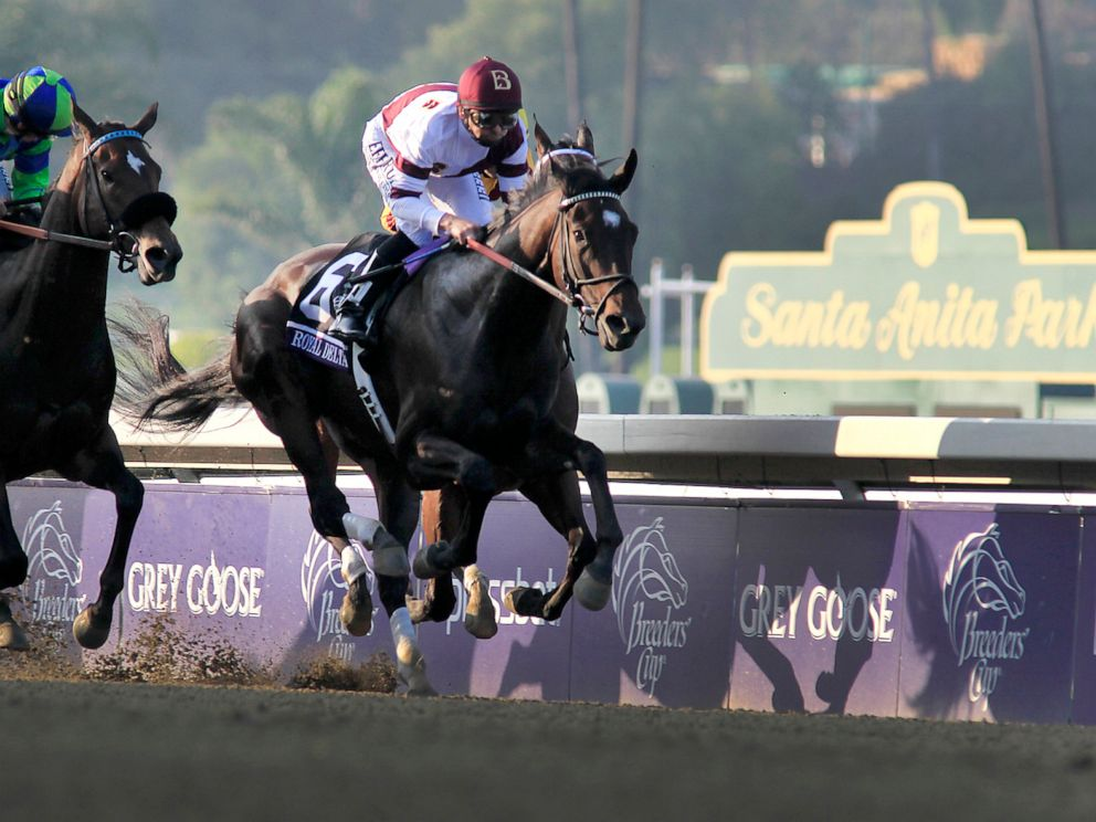 PHOTO: Jockey Mike Smith aboard Royal Delta, right, is in the lead during the Breeders Cup Ladies Classic at Santa Anita Park, Nov. 2 2012, in Arcadia, Calif.