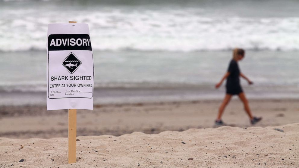 Warning signs are placed along the beach to warn swimmers and surfers of recent shark sightings in San Clemente, Calif., May 23, 2017.