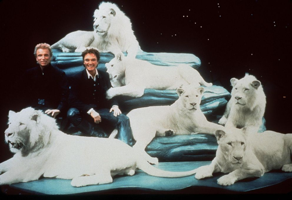 PHOTO: Siegfried & Roy are seen with their white lions on the stage set of their Las Vegas Show Siegfried & Roy: The Magic Box in 1999.