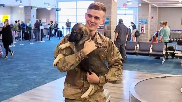 Army soldier reunites with puppy he rescued in Syria at Florida airport
