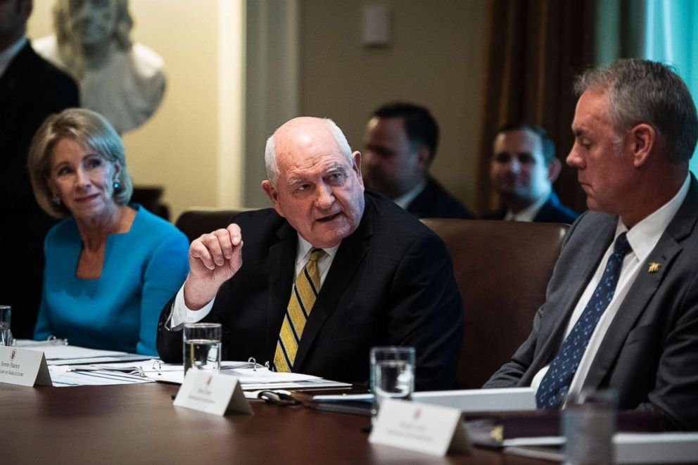 PHOTO: Secretary of Agriculture Sonny Perdue speaks during a cabinet meeting in the Cabinet Room of the White House on Oct. 17, 2018, in Washington.