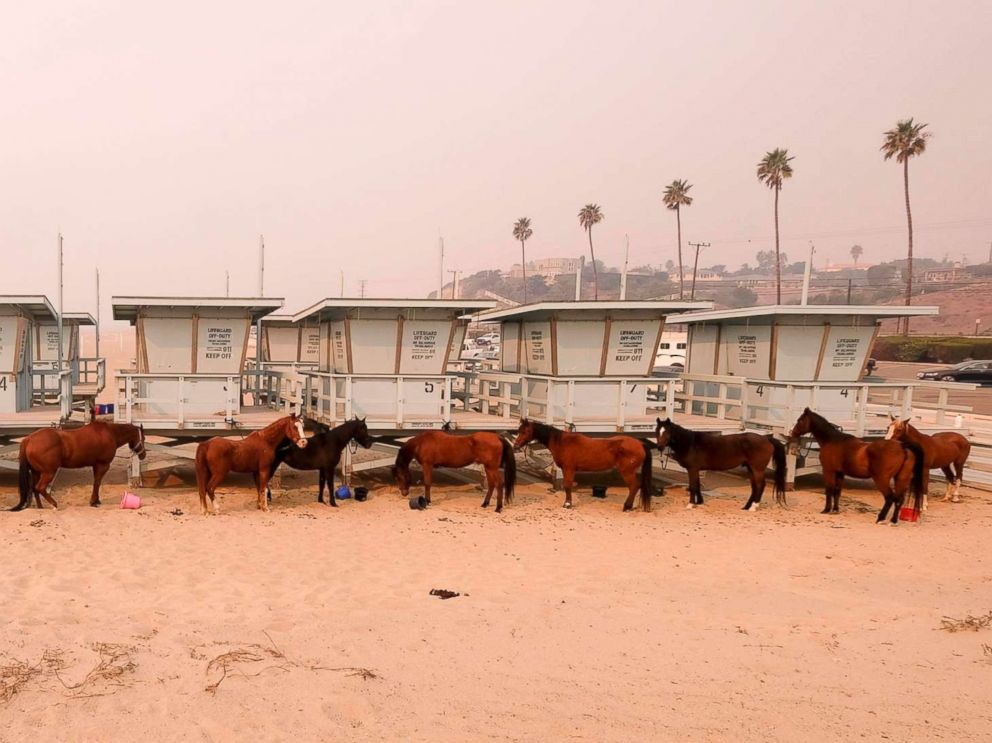 PHOTO: Horses are tied to lifeguard booths on the beach in Malibu, Calif., Nov. 10, 2018. Wildfires are burning in both Southern and Northern California.