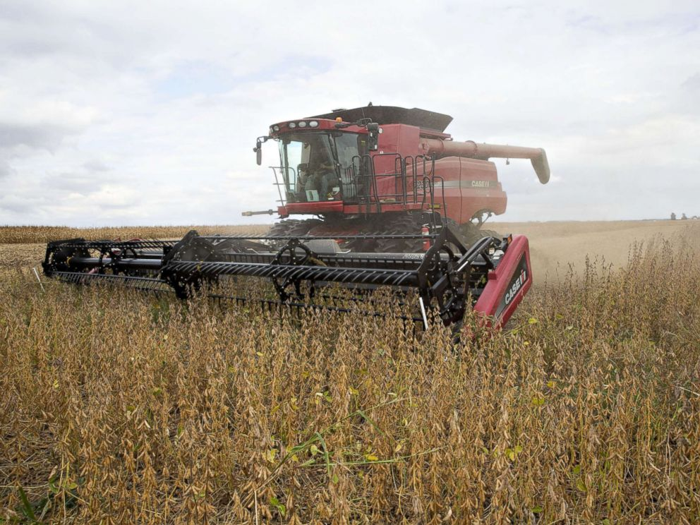PHOTO: Syngenta Group Co. NK Soybeans are harvested with a Case IH combine harvester near Princeton, Ill., Sept. 29, 2016, this this file photo.
