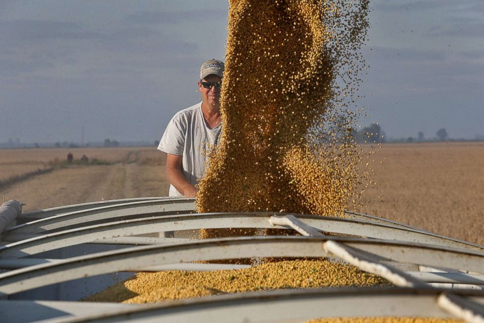 Farmer Chris Crosskno watches as soy beans are loaded into his truck, Oct. 11, 2017, at his farm near Denton, Mo.