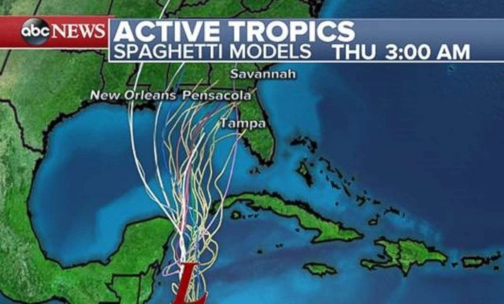 PHOTO: Spaghetti models show the possible tropical depression moving north, though there is little agreement on where it will land along the Gulf Coast.