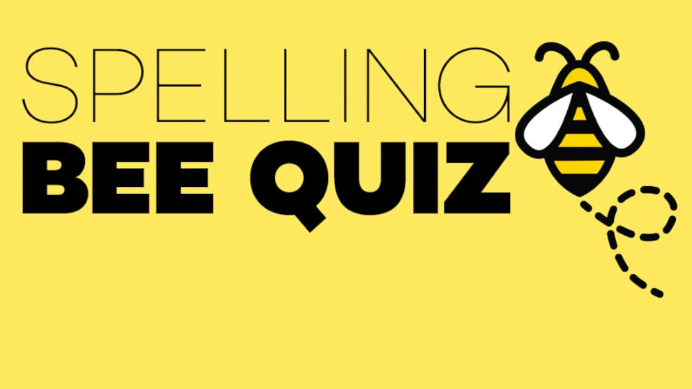 auditing quiz bee Avoiding lawsuits and prosecution under sarbanes-o how do you keep yourself, your department, and your company out of the sarbanes-oxley (sox in auditing.