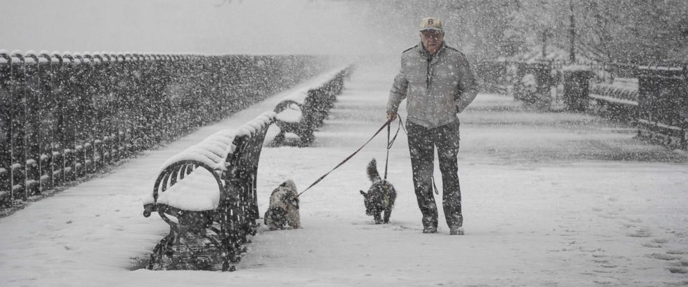 PHOTO: A man walks dogs in the snow on the Brooklyn Promenade, April 2, 2018 in the Brooklyn borough of New York City.