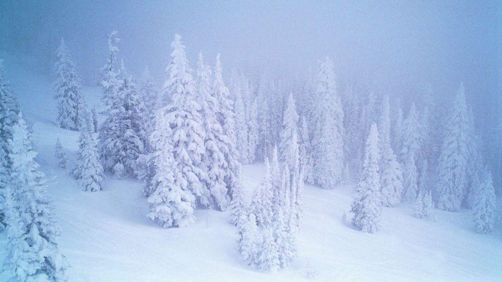 人救出した後、雪の下に埋以下の崩