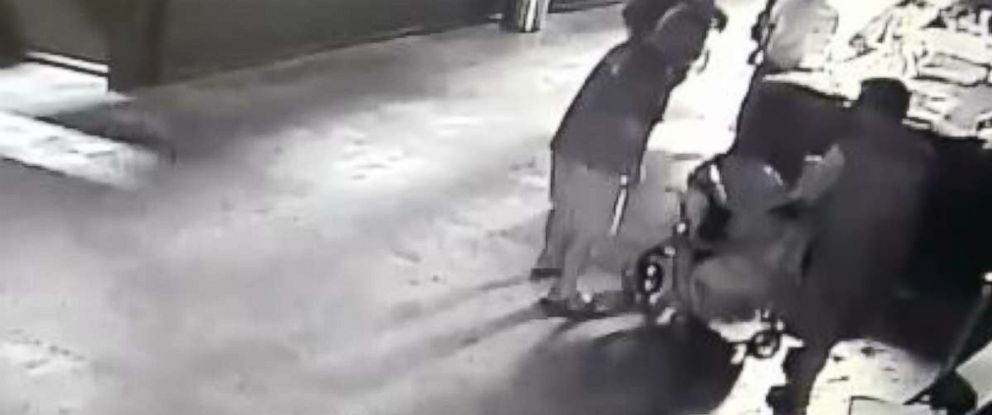 Video footage showed suspects wrapping a stolen shark in a wet blanket and stuffing it in a stroller.