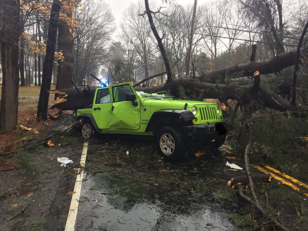 The Tewksbury Police posted this photo to their Twitter account of a tree severely damaging a jeep, March 2, 2018, in Tewksbury, Mass.