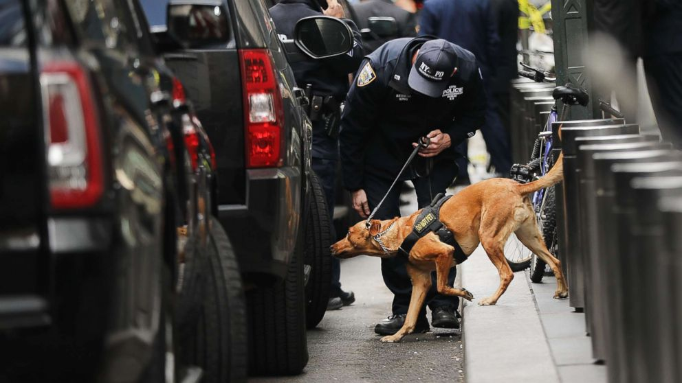 A police bomb-sniffing dog is deployed outside of the Time Warner Center after an explosive device was found this morning on Oct. 24, 2018 in New York.