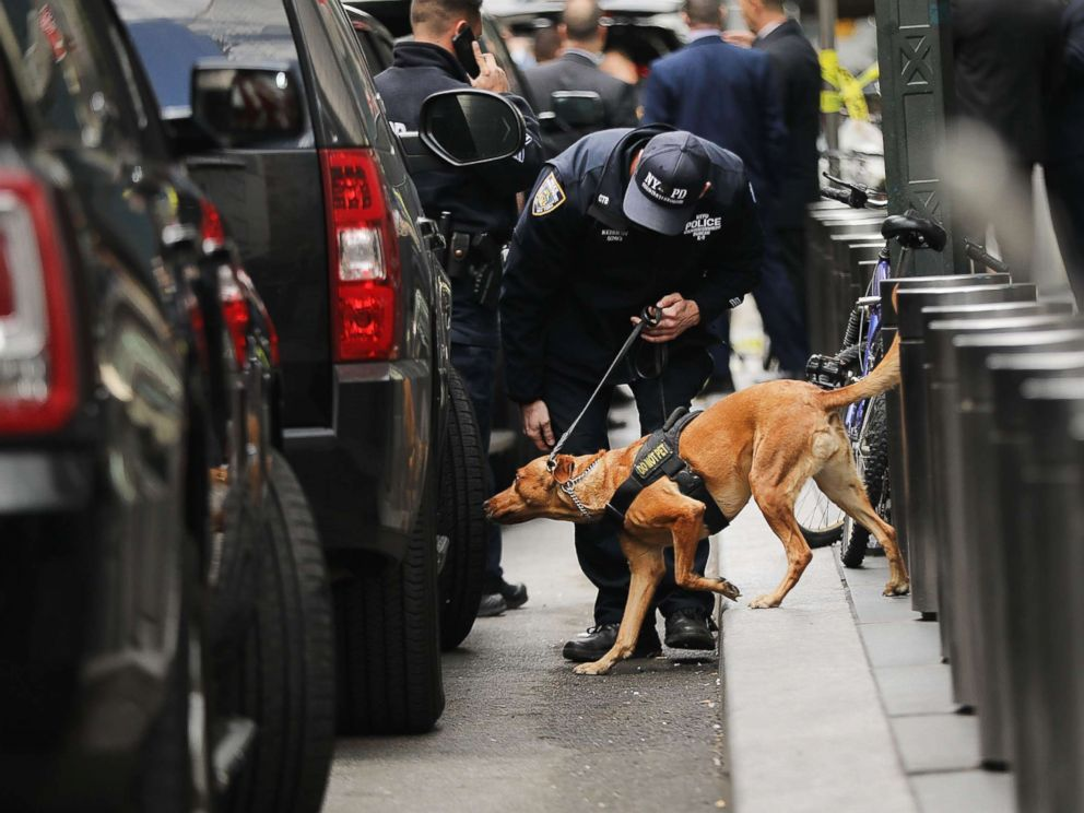 PHOTO: A police bomb-sniffing dog is deployed outside of the Time Warner Center after an explosive device was found this morning on Oct. 24, 2018 in New York.