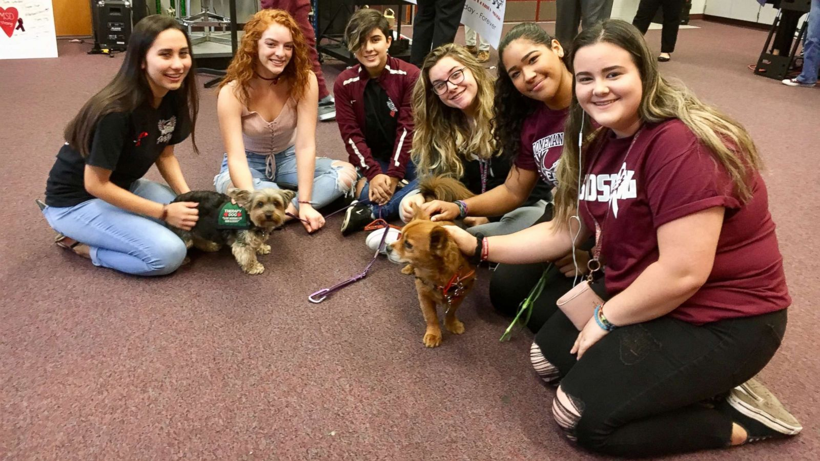Therapy Dogs Comfort Marjory Stoneman Douglas Students and Staff on First Day Back