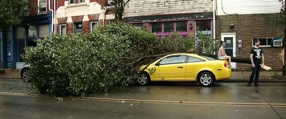 PHOTO: A tree fell on a car in Lawrenceville, Pa., on Saturday, Aug. 17, 2019, as severe storms moved through the area.