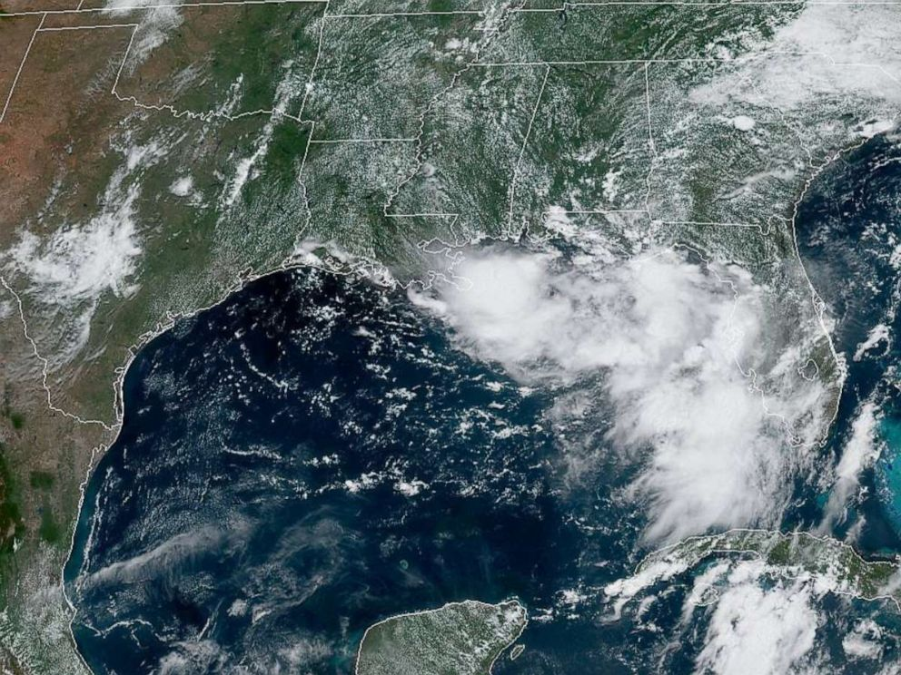PHOTO: Satellite imagery of the Gulf Of Mexico region on July 9, 2019.