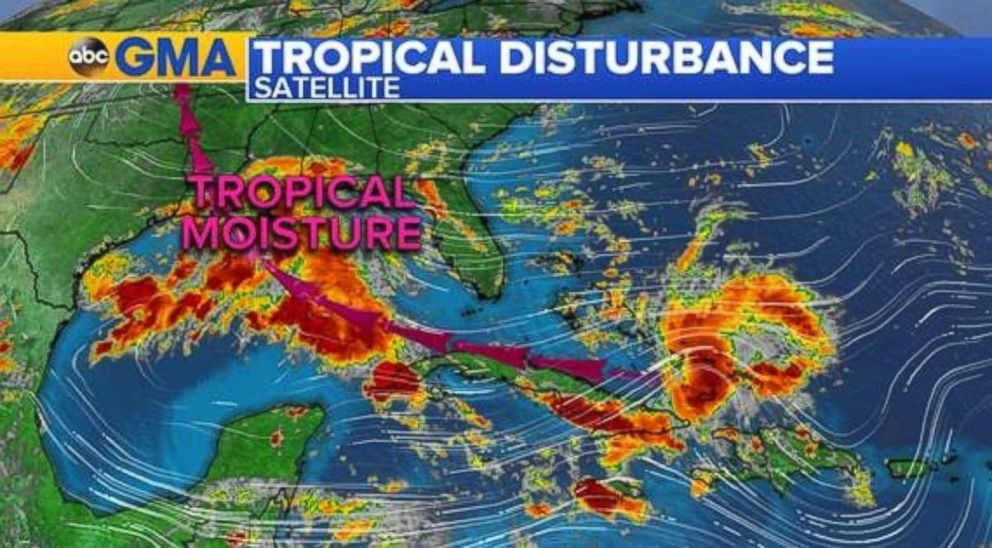 Tropical moisture will bring rain to Florida and the Gulf Coast for the next few days.