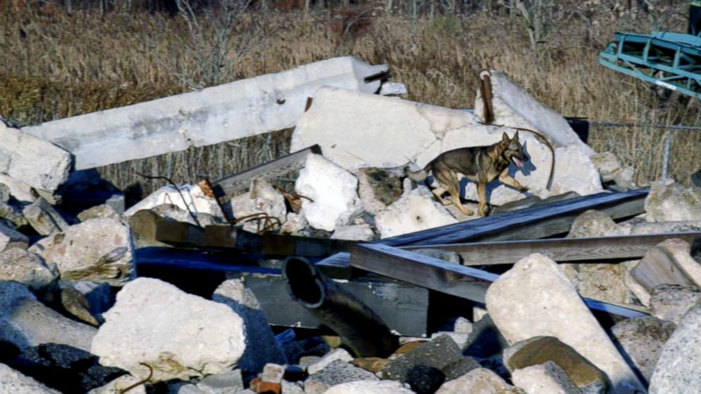 PHOTO: Tuz searches for victims at the rubble pile in Staten Island, N.Y.