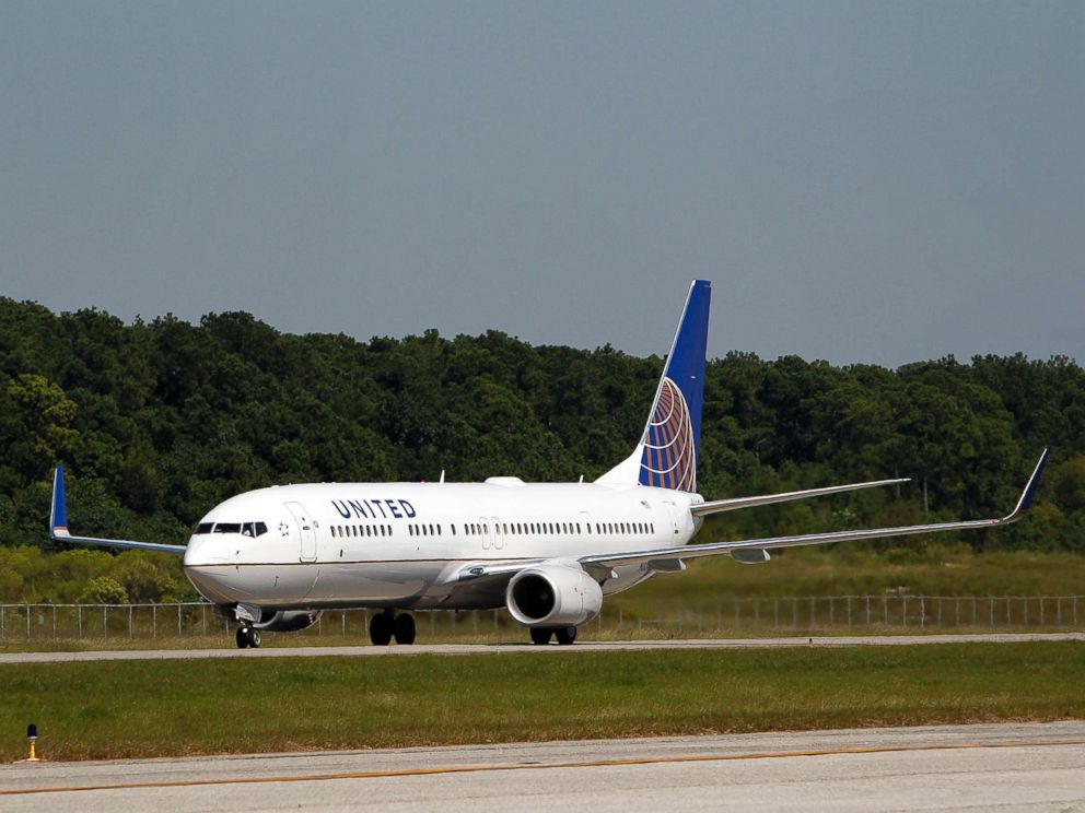 United to stop carrying animals in cargo compartments temporarily